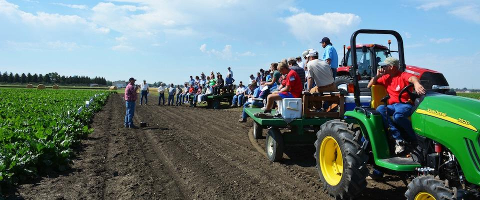 MSU to host annual agricultural research center field days across Montana.