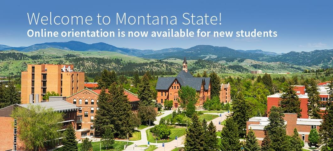 An overhead shot of the Montana State University campus