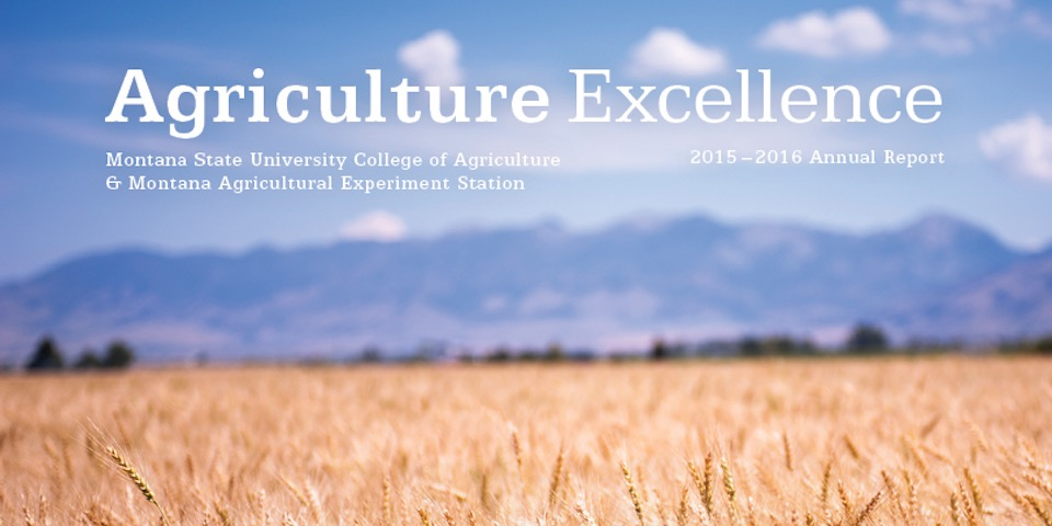 Agriculture Excellence 2015-16 Cover