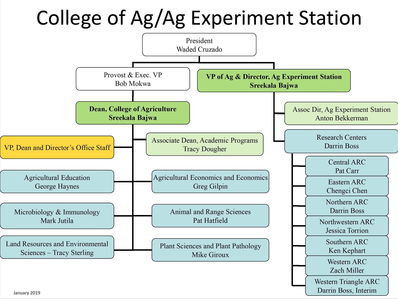 COA/MAES Organizational Chart