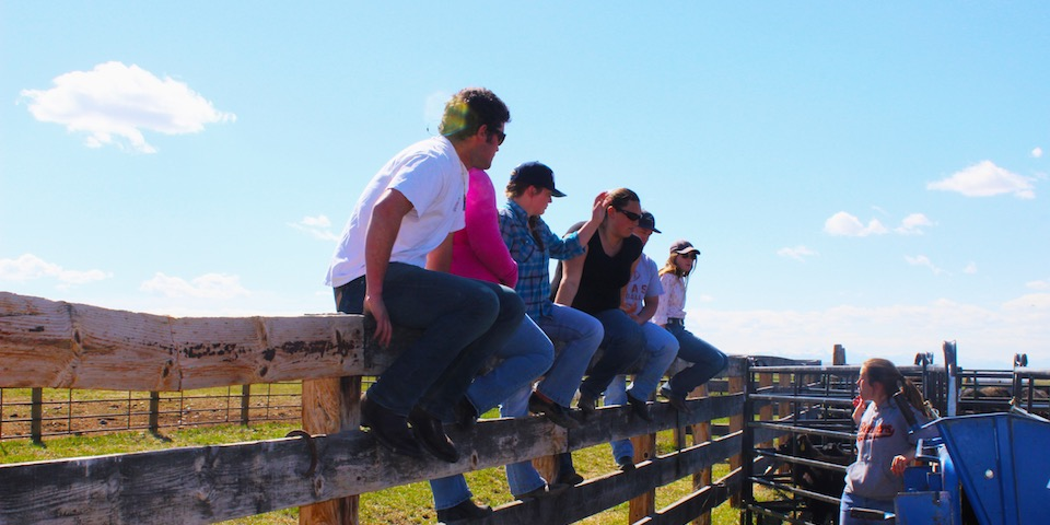 Students at BART Farm
